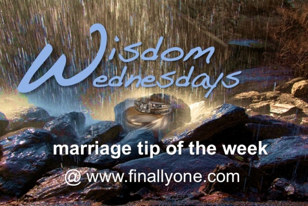 Wisdom Wednesdays Final Logo